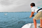 Kenny keeps the pressure on as his tarpon skyrockets out of the water