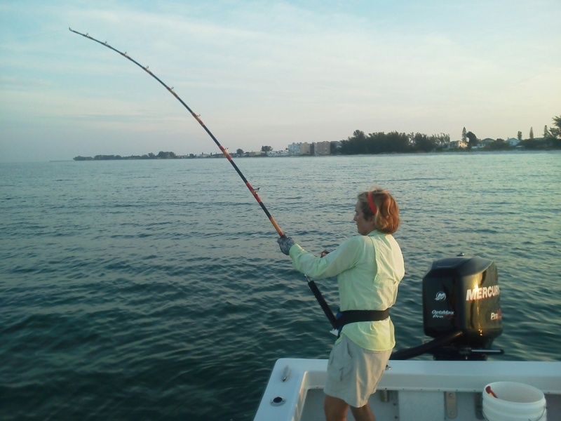 Debbie Miller reels one in during the 2015 Suncoast Tarpon Round up!
