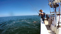 Cayden Crisp releases a nice tarpon during the 81st STR