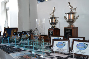 The 2014 Awards Table